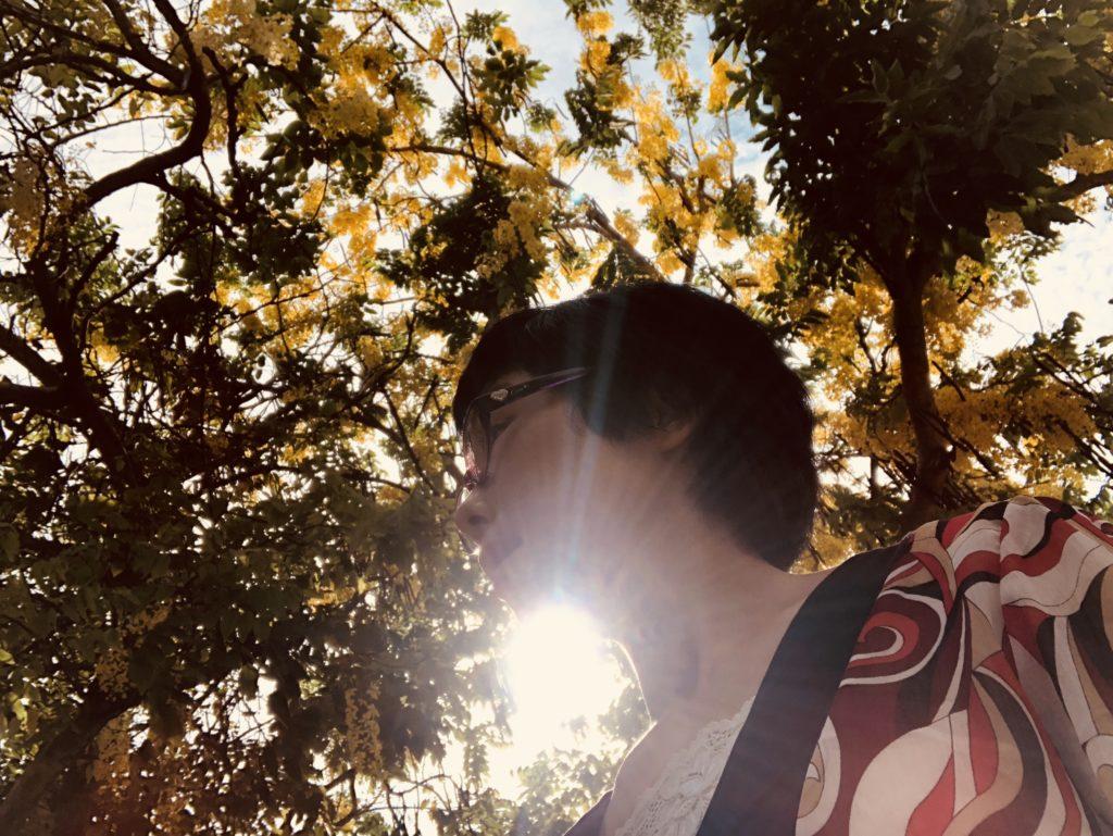 台湾の陽だまり-Yasuyo Watanabe