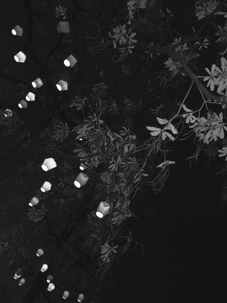 「ブラックな世界」Photo by Yasuyo Watanabe,台湾, April 2018