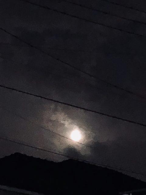 「悩みがあるから輝ける」Photo by Yasuyo Watanabe,埼玉県入間市,September 2018