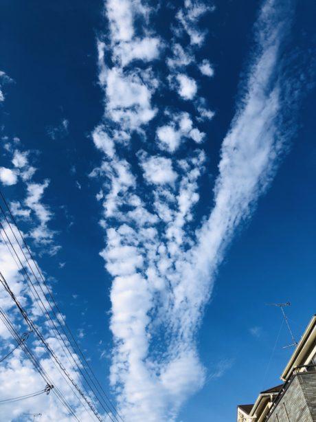 「広々とした気持ちで」Photo by Yasuyo Watanabe,埼玉県入間市,October 2018